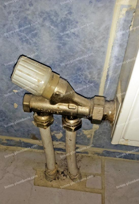 changer tete de robinet radiateur excellent faites des conomies avec des robinets with changer. Black Bedroom Furniture Sets. Home Design Ideas